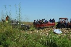 11-2012-oogst2