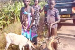 09-Edirisa-recvs-goats